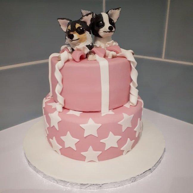 Awesome Chihuahua Dog Cake Nikkibakescakes Org Funny Birthday Cards Online Unhofree Goldxyz